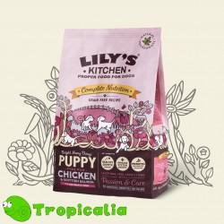 Lily's Kitchen Pollo e Salmone per cuccioli - Perfectly Puppy Dry Food da 1 kg