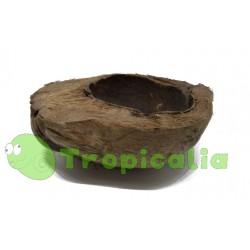 Decorazione noce di cocco